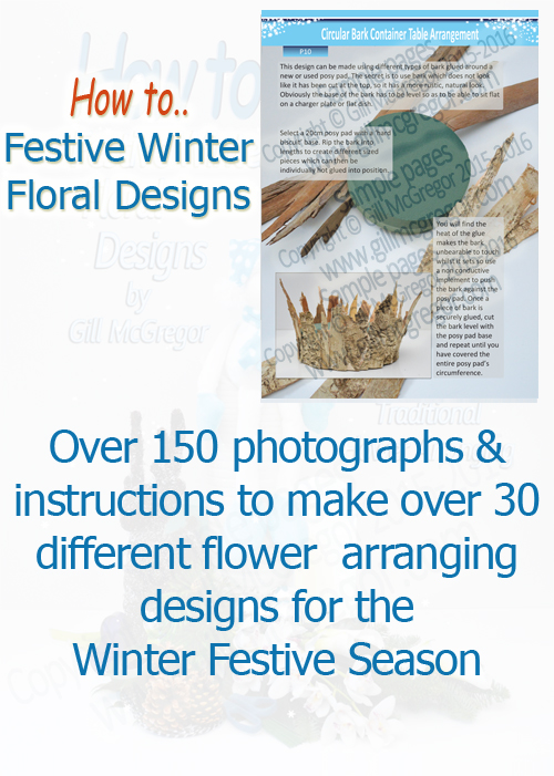 Flower Arranging Books by Gill McGregor 'Festive Winter Floral Designs'